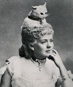 Taxidermy cat hat (sadly, a Victorian fashion statement).