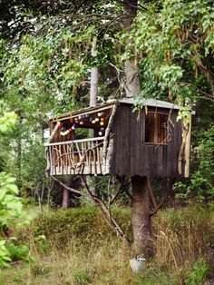 » bohemian tree houses & forts » wild adventures » boho outdoors » imagination » earth baby » free spirit » living free »