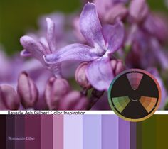 Beverly Ash Gilbert: Color Inspiration - Romantic Lilac