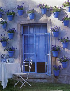 Blue Garden Window