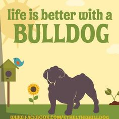 Life is better with a bulldog! Thank you pals for always being there Love Ethel Mae - Cutest English Bulldog in Chicago! Bulldog Quotes http://www.facebook.com/EthelTheBulldog