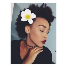 Natural hair, Afro , African beauty, South African beauty