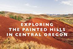 Exploring The Painted Hills in Central Oregon