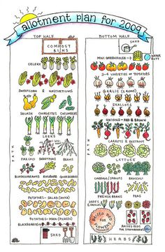 allotment plan  Something to help you along it is almost spring. Obviously it isn't 2009 but this may give you inspiration for your garden.