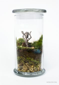 Guardians of the Galaxy Inspired Terrarium // Miniature Baby Groot — Moss Love