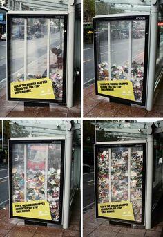 """""""Esta es la basura tirada alrededor de esta parada de bus desde el lunes"""""""