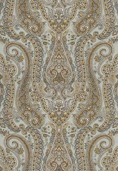 Isabella Paisley in Mineral - Schumacher Textiles, Textile Prints, Textile Patterns, Textile Design, Fabric Design, Print Patterns, Pattern Design, Paisley Fabric, Paisley Pattern