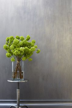 Viburnum Oppulus for Spring! Deco Floral, Arte Floral, Floral Design, Ikebana, Indoor Garden, Indoor Plants, Flower Vases, Flower Art, Bouquet