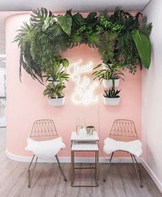 Image may contain: people sitting, plant, table and indoor Spa Room Decor, Beauty Room Decor, Beauty Salon Decor, Beauty Salon Interior, Makeup Studio Decor, Home Nail Salon, Nail Salon Decor, Pink Nail Salon, Salon Interior Design