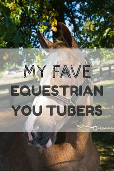 The equestrians are taking youtube by storm!