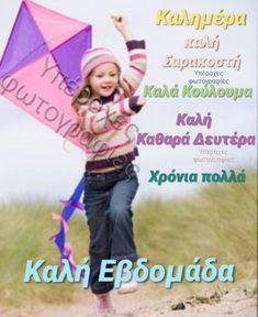 Beautiful Pink Roses, Happy, Photography, Decor, Photograph, Decoration, Fotografie, Ser Feliz, Photo Shoot