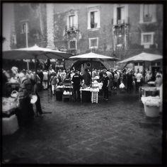 Piscaria, mercato del pesce. Catania, Italy
