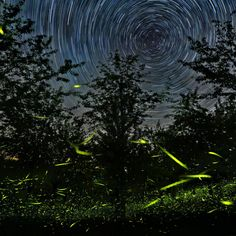 Fireflies and stars of Castignano, Italy.
