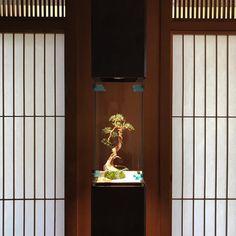 水引アートクリエイター miconoさん(@micono_fiber_art) • Instagram写真と動画 Japanese Interior, Room Decor, Instagram, Japanese Interior Design, Room Decorations, Decor Room