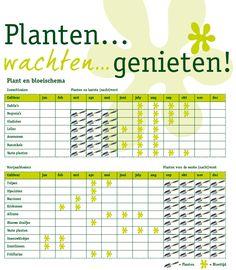Hierop kan je zien met de leerlingen wat je kan planten en wanneer! Een handig schema!