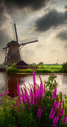 Scenic setting in Kinderdijk, Netherlands
