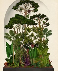 The Botanical Drawings of Katie Scott London-based illustrator is inspired by natural studies and the history of botanical art. Her beloved themes are fauna & flora, which she uses consistently to design wallpapers, book covers and Abstract Illustration, Nature Illustration, Botanical Illustration, Botanical Flowers, Botanical Prints, Flowers Garden, Exotic Flowers, Fresh Flowers, Purple Flowers