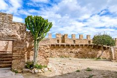 Mallorca Arch, Outdoor Structures, Tours, Mansions, Garden, Travel, Majorca, Longbow, Viajes