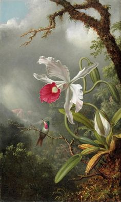 Design is fine. History is mine. — Martin Johnson Heade, Orchids and Hummingbirds,...