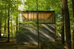 """The architects have named their creation """"The Scholar's Library."""""""