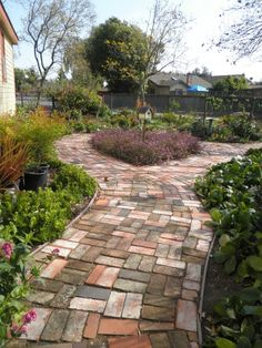 Recycled bricks - lovely!! This beautiful path at Shinn Park in Fremont, Ca, was made from recycled bricks. Lovely colors mixed together make a stunning path. Great use of #sustainable #landscaping #materials.