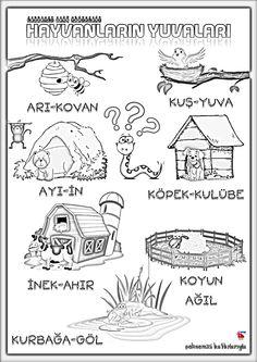 Science and nature 446700856765991460 Preschool Worksheets, Classroom Activities, Science For Kids, Science And Nature, Learn Turkish Language, Hidden Pictures, Book Corners, Animal Habitats, Primary School
