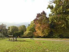 Autumn on Campus- At Highfield Campus in Southampton, Hampshire #LoveSouthampton