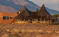 The Little Kulala Desert Lodge offers a most luxurious desert retreat from which best to explore the beautiful surroundings. Located in the Thousands of hectares Kulala Wilderness Reserve near Namibia's hyenas Sossusvlei Pan. Lodges, Wilderness, Monument Valley, Safari, Wildlife, African, The Incredibles, Camping, Explore