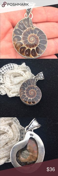 """.925 VINTAGE STYLE AMMONITE FOSSIL PENDANT This is a .925 silver absolutely stunning!!!!!   AMMONITE FOSSIL PENDANT.  I TOOK PICS IN MORNING LIGHT AND INDOORS.   Measures at a 2 1/4"""" drop and 1 1/4"""" at widest point across.  Perfect for sliders, omega, or chain necklaces.  Beauty is in the detail and variations of color.  Also matches a ring posted as well.  Each are posted separately.  This is beautiful and a piece of history as amber jewelry is. Jewelry"""