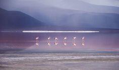 Traveler's Stunning Photos Highlight the Natural Wonders of Bolivia - My Modern Met