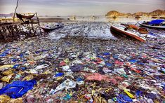Report: Plastic pollution in the ocean is reaching crisis levels. Plastic has infiltrated the ocean's ecosystem, from plankton to whales. We are killing this world with plastic. Ocean Pollution, Plastic Pollution, Save Our Oceans, Oceans Of The World, Marine Debris, Save Our Earth, Arctic Ice, Environmental Issues, Environmental Pollution