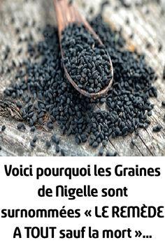 Voici pourquoi les Graines de Nigelle sont surnommées « LE REMÈDE A TOUT sauf la mort »… Sauf, Voici, Cancer, Paradis, Herbs, Herbal Plants, Black Seed, Tooth Ache