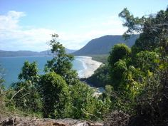 Hiking Tracks in the Daintree Rainforest. - Daintree Rainforest - Local Tourism Network - Book Direct
