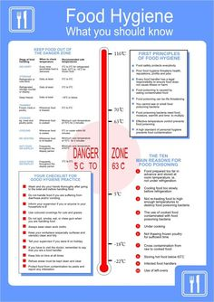 Food Hygiene Poster 420x595mm: Amazon.co.uk: DIY & Tools First Principle, Danger Zone, Food Out, Food Safety, Diy Tools, Amazon, Health, Poster, Amazons