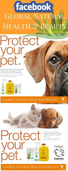 Protect your pet! Natural healt for your pets Forever Freedom, Sheila E, Forever Aloe, Forever Living Products, Pet Care, Aloe Vera, Natural Health, Animals And Pets, Your Pet