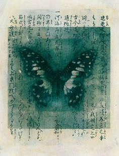 'Butterfly Calligraphy' by Elena Ray.