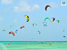 Costamar USA (@CostamarUSA) | Twitter El #kitesurf es un deporte muy popular en #Aruba ✈Reserva y viaja con la #MejorTarifa en http://www.costamartravel.com