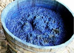 Indigo dye has been used for thousands of years to dye fabric blue. It has been the most famous and most widely used natural dye throughout history and is still extremely popular today as evidenced by the familiar colour of blue jeans.
