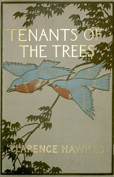 Tenants of the Trees. Clarence Hawkes. Illustrated by Louis Rhead. Boston: L.C. Page & Co.,1907