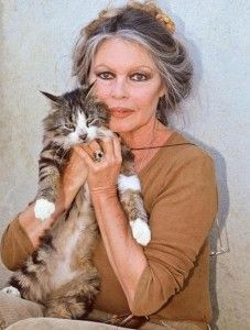 """BrIGITTE  """"Por supuesto que se puede querer más a un gato que a un hombre............"""""""