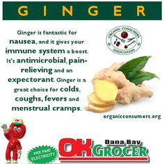 You've likely sipped ginger ale or ginger tea when you've had an upset stomach. Ginger's fantastic for nausea Health And Nutrition, Health And Wellness, Healthy Tips, Healthy Recipes, Healthy Foods, Healthy Choices, Remedies For Menstrual Cramps, Vegetables For Babies, Veggies