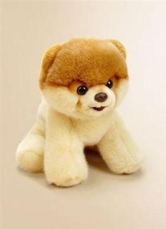 Dog Named Boo Stuffed Animal