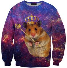 Funny pictures about Hamster In A Sweater. Oh, and cool pics about Hamster In A Sweater. Also, Hamster In A Sweater photos. Hamsters, Karl Lagerfeld, Pikachu, Pokemon, Super Cute Animals, Galaxy Print, Printed Sweatshirts, Fashion Sweatshirts, Men's Hoodies
