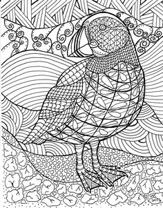 Coloring Page Zentangle Puffin Digital By InspirationbyVicki