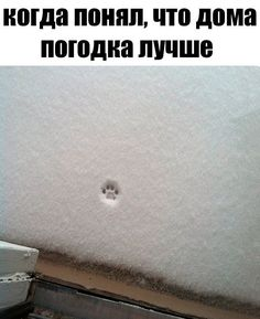 Ржака каждый день. Заходи и посмейся! / Писец - приколы интернета