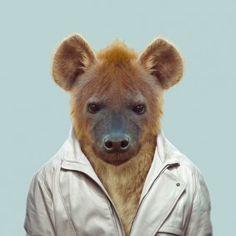 Zoo Portraits » Zoo Portraits