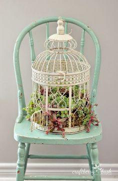 leuk idee voor mijn oude vogelkooitje,vullen met vetplantjes!