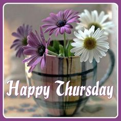 Happy Thursday, Day For Night, Good Morning, Plants, Buen Dia, Bonjour, Plant, Good Morning Wishes, Planets