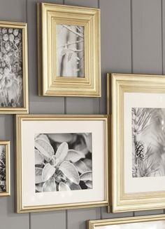 Spray painted Gold frames with Black and white photos on a grey wall. YES please!