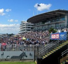 With just over a week to go this year's Investec Epsom Derby is fast approaching when plus race goers will descend on the racecourse situated just outside the market town of Epsom. Epsom Derby, Horse Racing, Sporty, Horses, London, Luxury, Happy, Ser Feliz, Horse